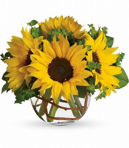 Weidigs floral flower shop in chardon oh chardon flower sunny sunflowers mightylinksfo