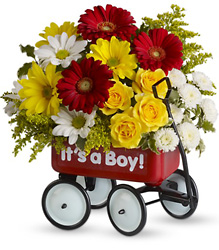 Baby's Wow Wagon by Teleflora from Weidig's Floral in Chardon, OH