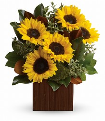 You're Golden Bouquet by Teleflora from Weidig's Floral in Chardon, OH