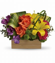 Teleflora's Shades Of Brilliance Bouquet from Weidig's Floral in Chardon, OH