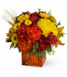 Teleflora's Autumn Expression from Weidig's Floral in Chardon, OH