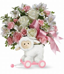 Teleflora's Sweet Little Lamb - Baby Pink from Weidig's Floral in Chardon, OH