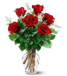 6 Red Roses from Weidig's Floral in Chardon, OH
