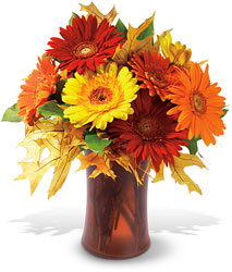 Autumn Gerberas from Weidig's Floral in Chardon, OH